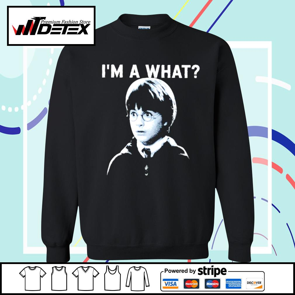 Harry Potter I'm a what s sweater